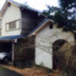伊豆の土地面積150坪の「1円別荘」